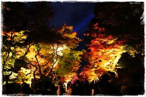 京都3DSC04135