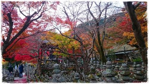 京都4DSC_5845