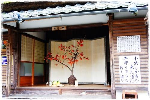 京都4DSC04193