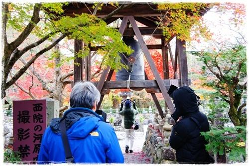 京都4DSC04194
