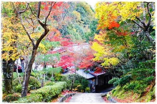 京都4DSC04198