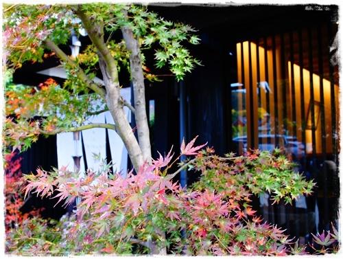 京都4DSC04223