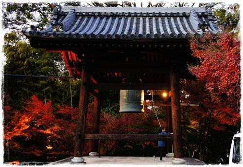 京都5DSC04257