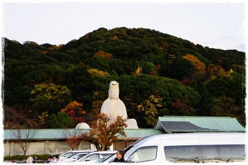 京都5DSC04259