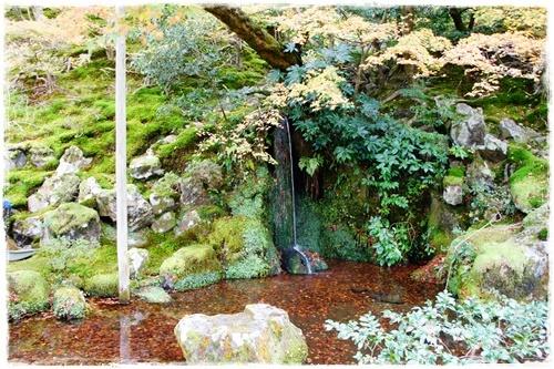 京都6DSC04283