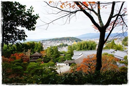 京都6DSC04290