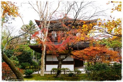 京都6DSC04297
