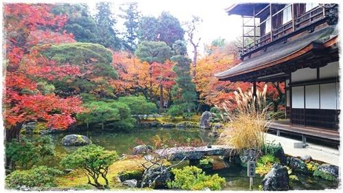 京都6DSC_5893