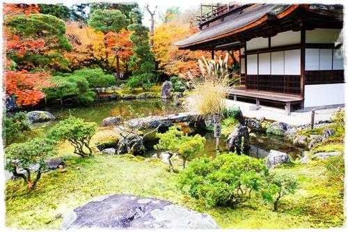 京都6DSC04277