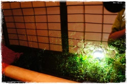 京都7DSC04269