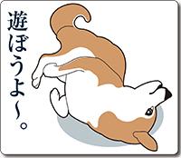 柴犬のラインスタンプ