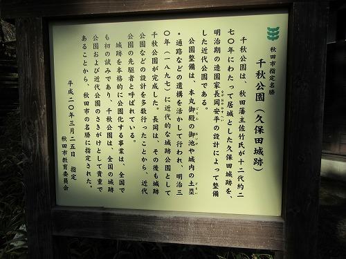1701akita2013.jpg