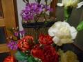 DSCN2670.jpg