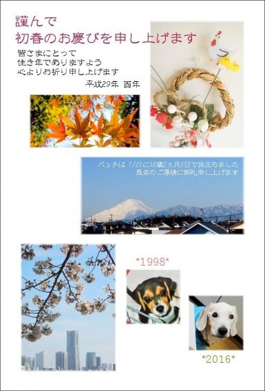 nenga_web.jpg