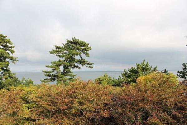 2016.11.18 滋賀県旅行 2日目① ホテルビワドッグ⑧朝ごはん-12