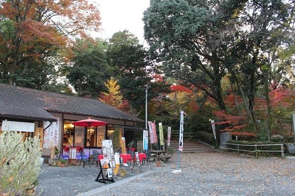 2016.12.09 長岡天満宮(紅葉)②-10
