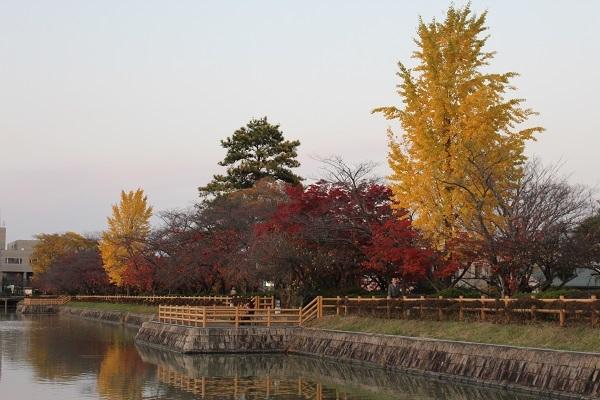 2016.12.09 長岡天満宮(紅葉)②-15