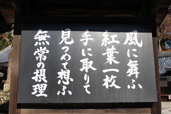 2016.12.24-1 柳谷観音-3