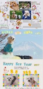 2017.01.22 年賀状いただきまちた♪-6