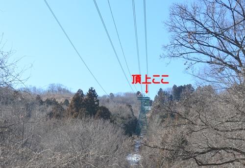 DSC_5372.jpg