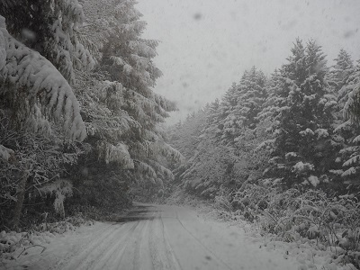 10月*積雪 (3)