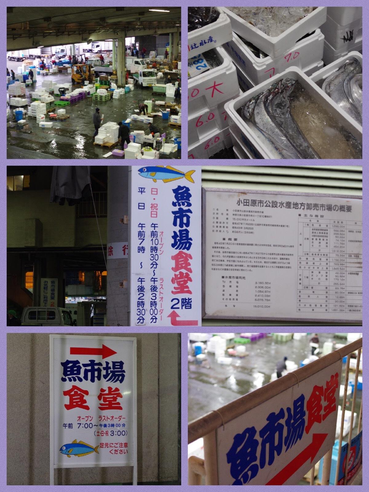 箱根ドライブ旅行 小田原魚市場食堂