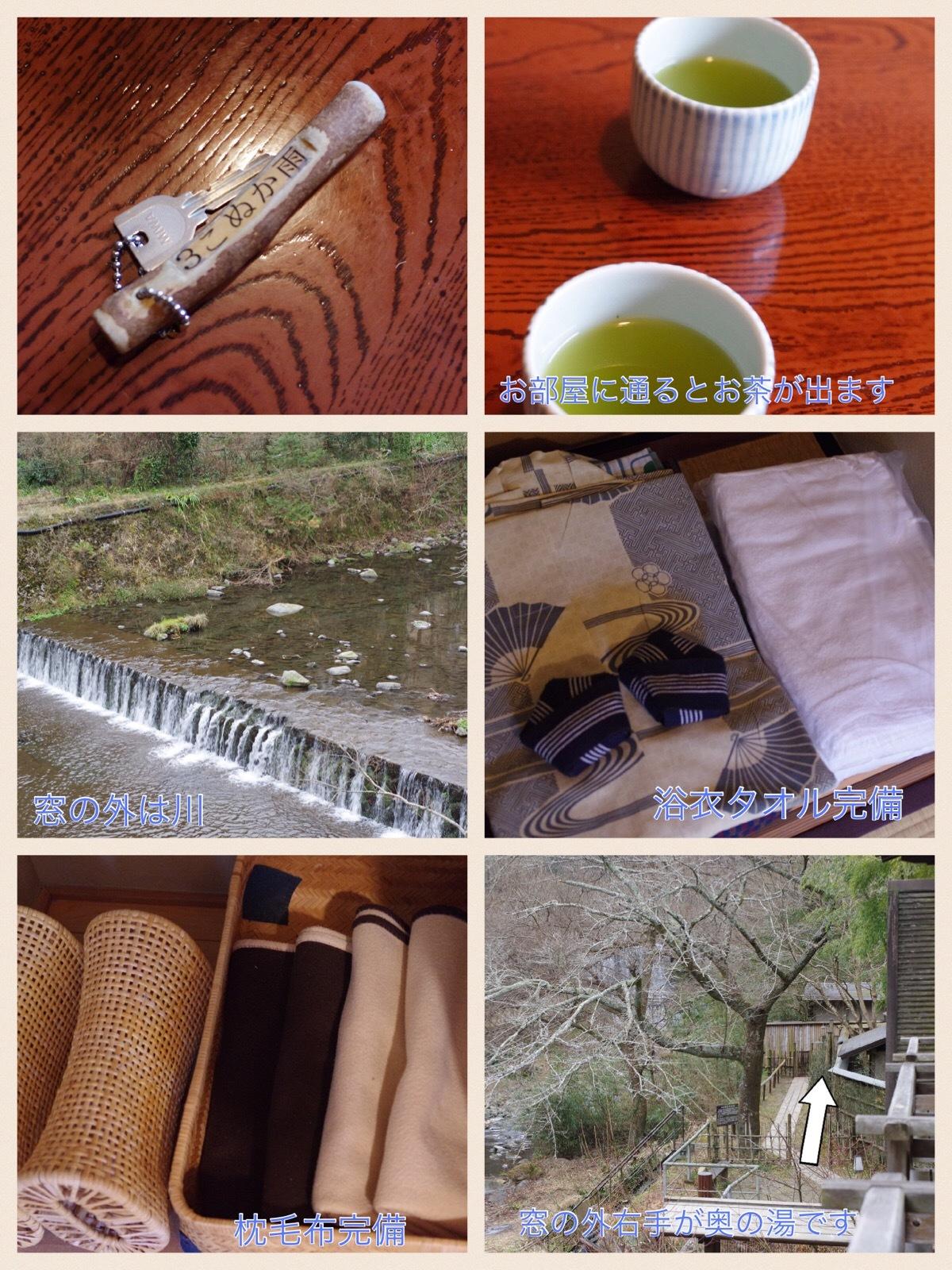箱根ドライブ旅行 箱根天山 奥の湯