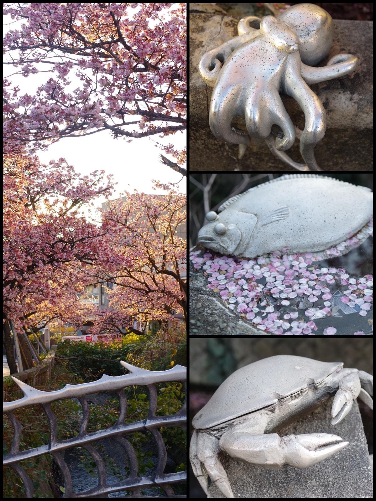 熱海ドライブ旅行 糸川桜まつり