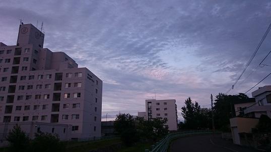 DSC_0208hhhh.jpg