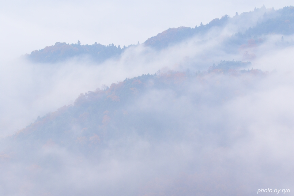 霧と紅葉_3
