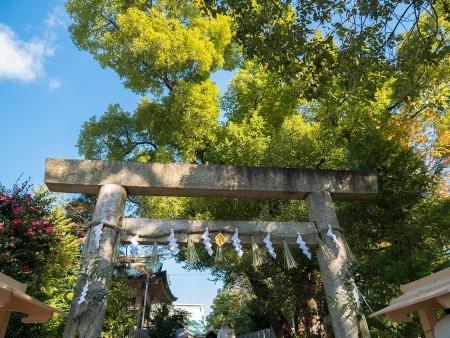 170103白山神社1