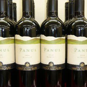 パヌール1