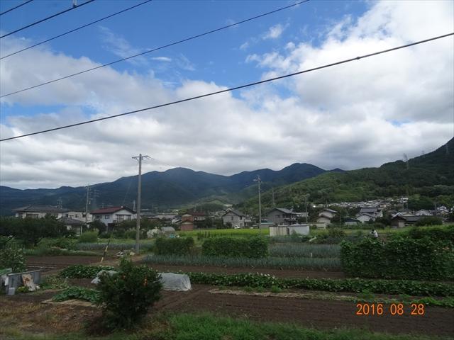 電車からの景色 3
