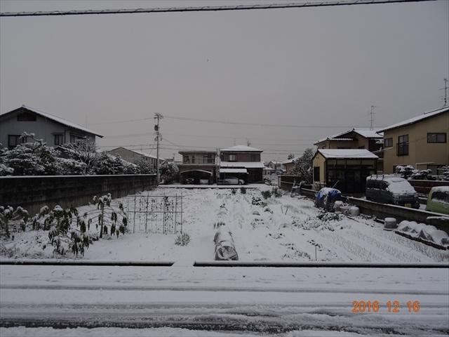 12-16 雪 3