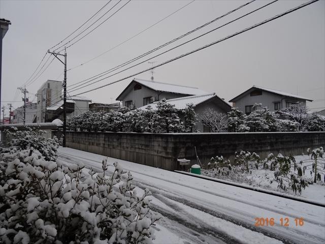 12-16 雪 4