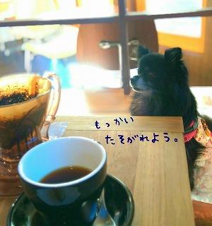 2016-11-19_174538.jpg