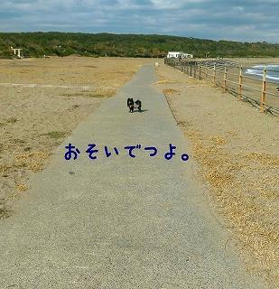 2017-01-08_160300.jpg