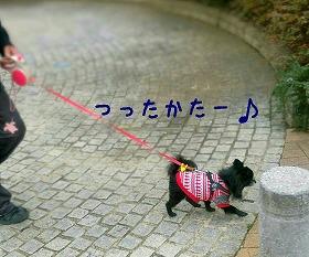 2017-01-18_211559.jpg