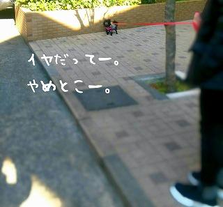 2017-02-08_21_67558.jpg