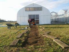 【写真】受付ハウス前の枕木を外して草を取った後で土をならしている様子