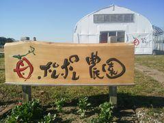 【写真】受付ハウス前の入口に取り付けたポレポレ農園の木製看板
