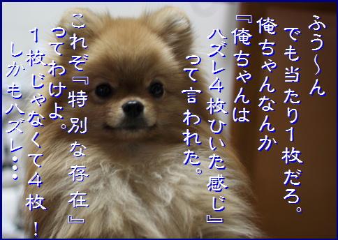 blog20170103-4.jpg