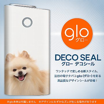 glo_002912.jpg