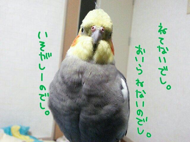 201612261659048a8.jpg