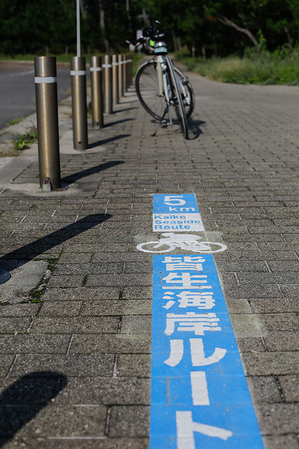 白砂青松の弓ヶ浜サイクリングコース皆生海岸ルート