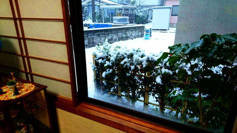 窓外の初雪