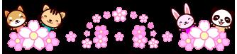ks_04_2016_sakura_03b_r17_c1.png