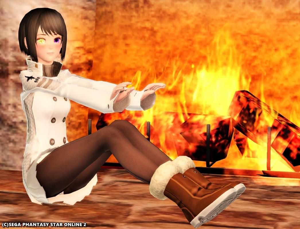 暖炉で暖かアークスコートF冬