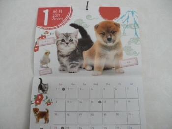 ペットの専門店コジマ☆オリジナルカレンダー2