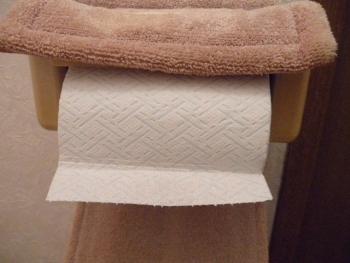 シャワートイレに最適【プレミアムシンラ】トイレットペーパー3